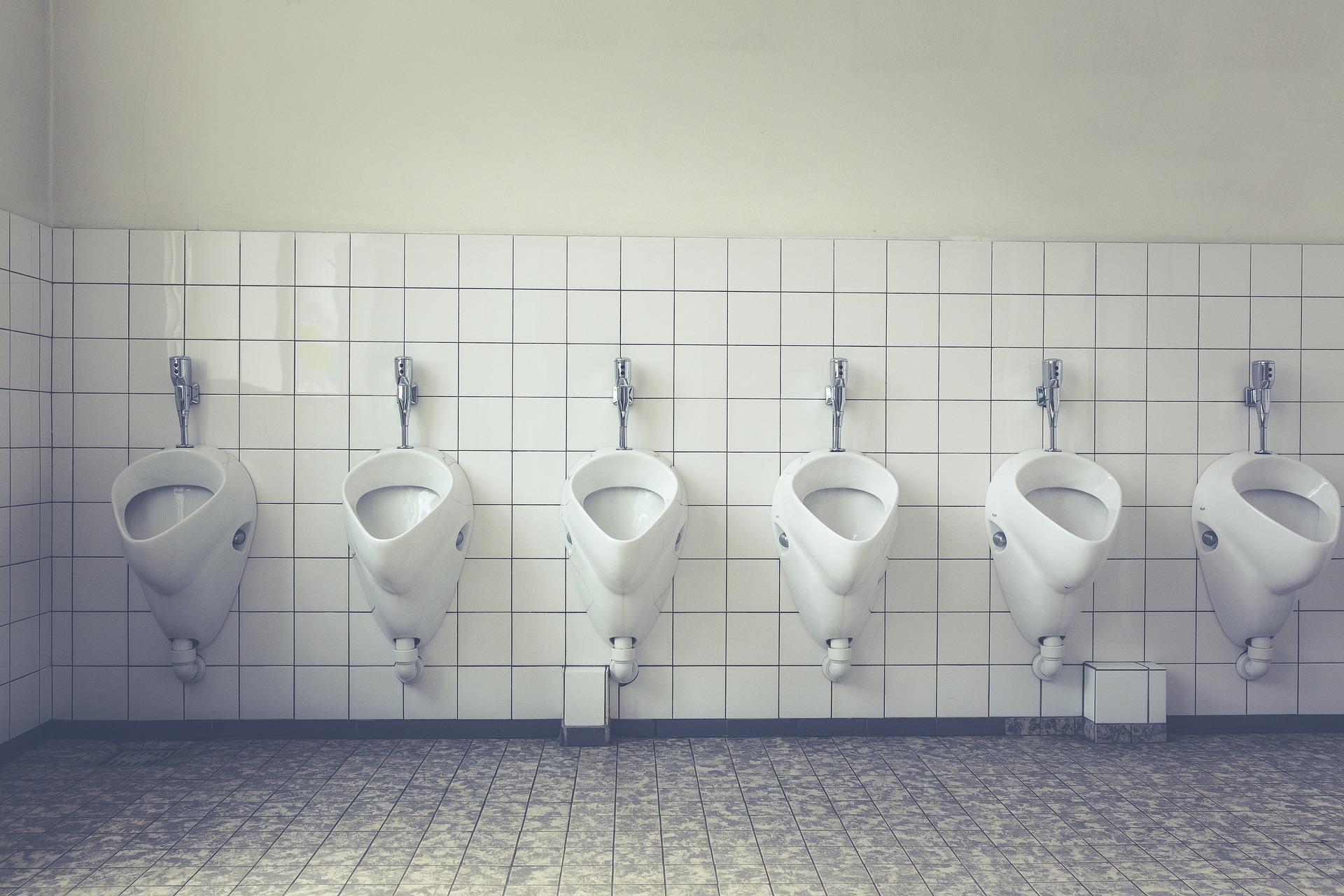 2_toilet-1542514_1920